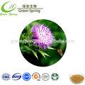 حار بيع 2014 الطب الصيني عشبة: استخراج الحليب الشوك، أدوية عشبية استخراج الحليب الشوك، أدوية عشبية