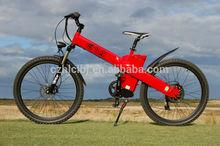 Changzhou Haoling Seagull - Hot sale 250W/350w/500w bmx bike electric , the professional