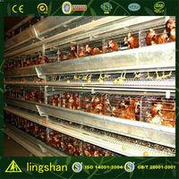China steel structure layer chicken farm chicken house