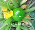 Gemüsesamen flaschenkürbis samen zum verkauf jade perlen keine. 2