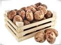top qualité de pommes de terre boîte en bois sur mesure