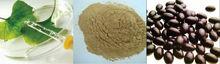 2014 high quality wholesale Ginkgo biloba capsules /softgel