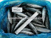 Marine Fish Export Frozen Bonito Flake