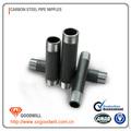 Largo hilo negro& galvanizado de acero al carbono niples