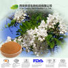 NutraMax Supply-Sophora Japonica Extract/Sophora Japonica Extract Powder/Natural Sophora Japonica Extract