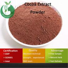 High Fat Cocoa Powder /Best Cocoa Powder /Cocoa Extract Powder