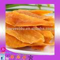 Venta al por mayor de alta calidad fresca y seca de mango para compradores/distribuidor