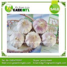 Grade A Fresh Garlic