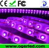 Hotsales DC12V Input Voltage smd 3528 strip led lighting