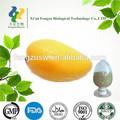 100% pur et naturel extrait de mangue d'afrique& mango leaf extract