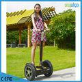 onlywheel usine d'OEM 2 roues de chariot électrique en vente de CE / FCC / ROHS approuvés en Chine