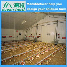 Hot-selling poultry equipment system chicken farm