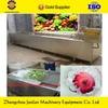 professional ozone fruit and vegetable washer