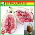 rifornimento della fabbrica di alta qualità fico polvere da uv