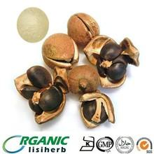 Camellia oleifera seed extract powder tea saponin 90~98% cas 8047-15-2