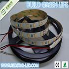 5m IP65 waterproof SMD 5630 RED 60 LEDs/m 300 SMD LED Strip Flexible Light DC12V
