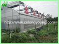 a agricultura de estufa projeto