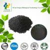 anti-aging, antioxidant Black Sesame Seed Extract