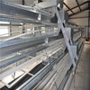 multi-tier layer chicken cage of Jinfeng brand hot sale