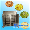 electric vegetable drying oven