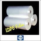 Print Plastik Packaging
