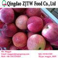 manzana fresca de manzana de washington