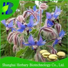 Health & beauty borage oil softgel for lady health