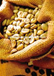 Best material Green Coffee Bean Extract (45%,50% Chlorogenic acid)/ Coffea arabica L