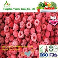 frozen raspberry dongbei red cherry