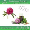 Nature Red Clover Extract/Red Clover Extract Biochanin A