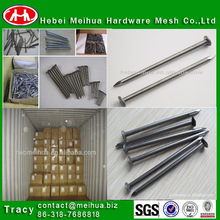 iso 9001 common iron nail for good sale (MANUFACTURER)