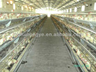 Laying hen breeder battery cages laying hens
