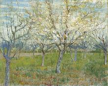 2014 Hot Wall Art Oil Painting Custom Size Van Gogh Impressionist Tree Painting On Canvas Tree