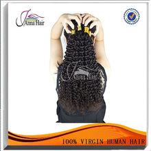 Competitve Price Untreated Virgin malaysia curly bulk hair