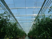 GA-280 10 years guarantee polycarbonate sheets for green house