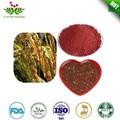 vendita calda prezzo migliore funzionale rosso estratto di lievito in polvere monacolina k