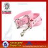 2014 hot sale fashionable nylon dog leash wholesale