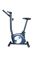 wholesale sports equipment Upright flywheel bike