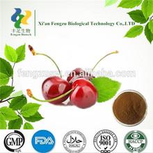 cherry fruit powder, dried cherry powder