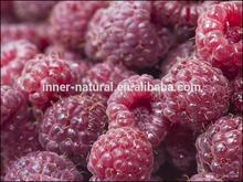 KOSHER fructus rubi P.E. Raspberry ketone 1-15% UV