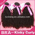 Natural de productos para el cabello más reciente productos calientes 2014 kinky curl 100% cabello humano brasileña dropshipping
