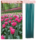 Raw Material Bamboo Sticks