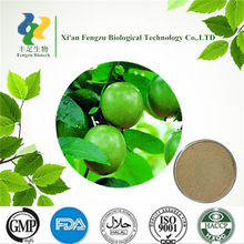 High quality Chinese olive powder