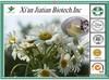Herbal medicine chamomile extract powder