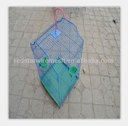 bird cage breeding,birding