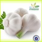 china natural fresh vegetable pure white garlic,garlic exporter ,garlic price of 2014