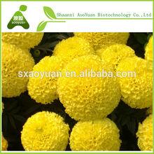 Extrato de calêndula/luteína/xantinas/phytoxanthin/xantofila