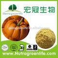 nature pure poudre de citrouille avec un échantillon gratuit