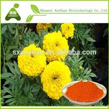 Extrato de calêndula/luteína/xantinas/phytoxanthin/xantofila para eua