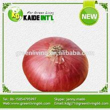 2014 Fresh Golden Onions